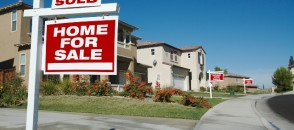 Professional Real Estate Property Manager